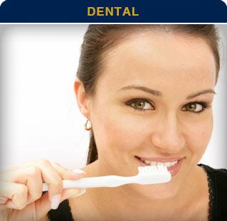 Metlife Dental Providers